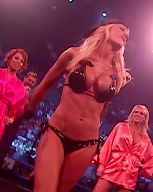 I Jerked Off So Many Times To Ashley Massaro Back In The Day! I Loved Her Tits!