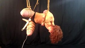 Vibed And Suspended